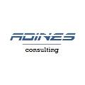 Adines Consulting.jpg
