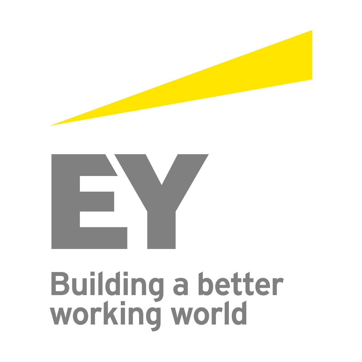 Partnerlogo Ernst & Young GmbH