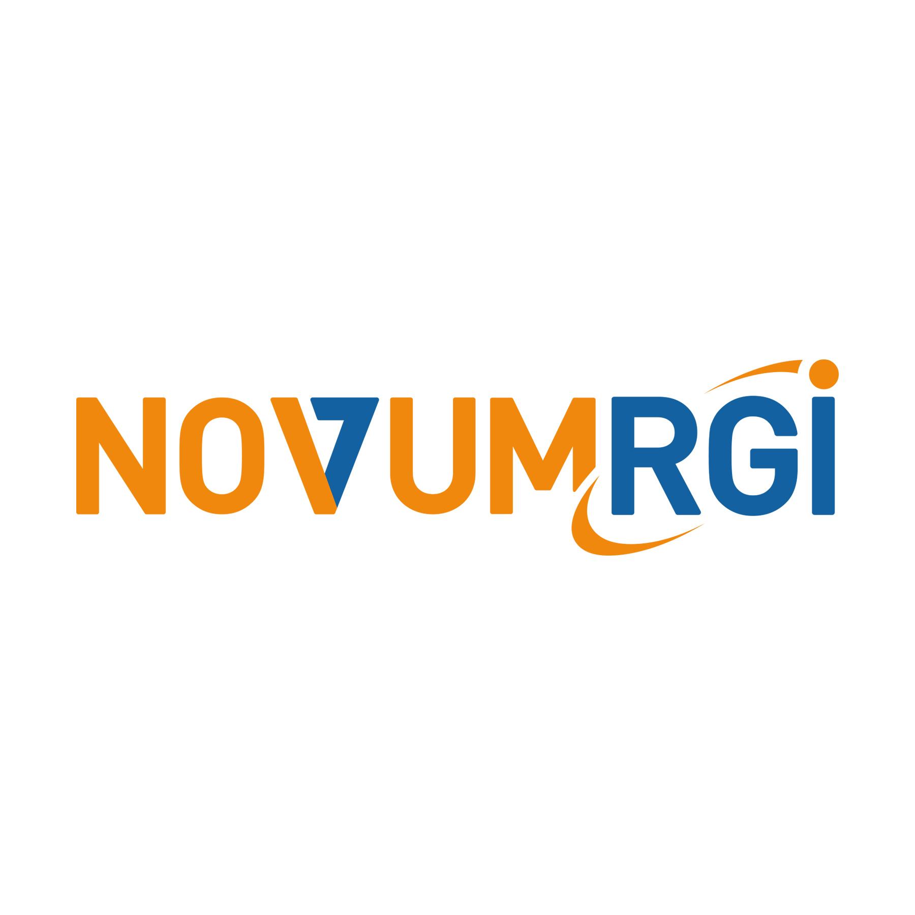 Partnerlogo NOVUM-RGI IT für Versicherer