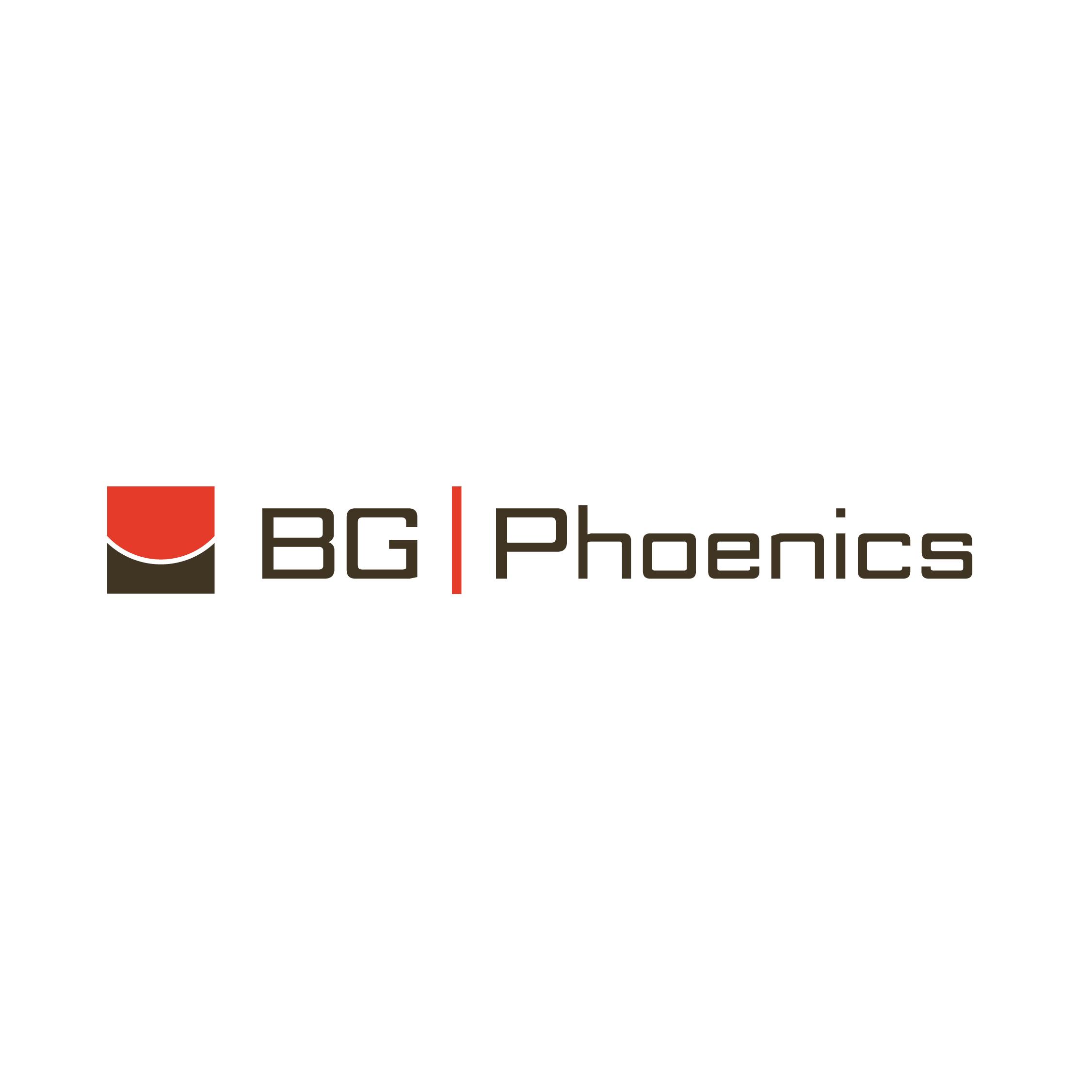 Partnerlogo BG-Phoenics