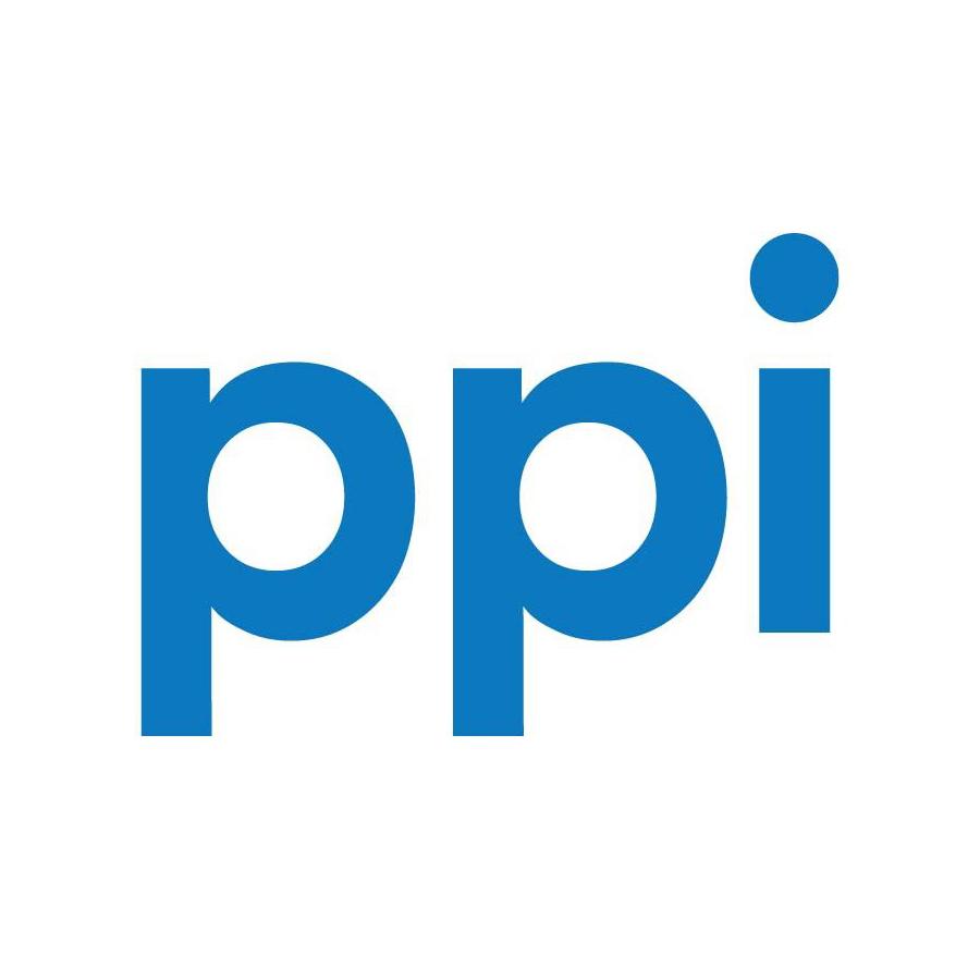 Partnerlogo PPI AG
