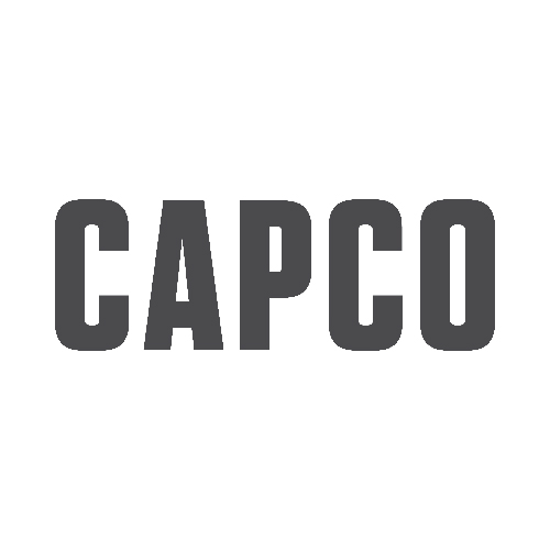 Partner: Capco