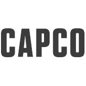 Partnerlogo Unternehmensberatung Capco